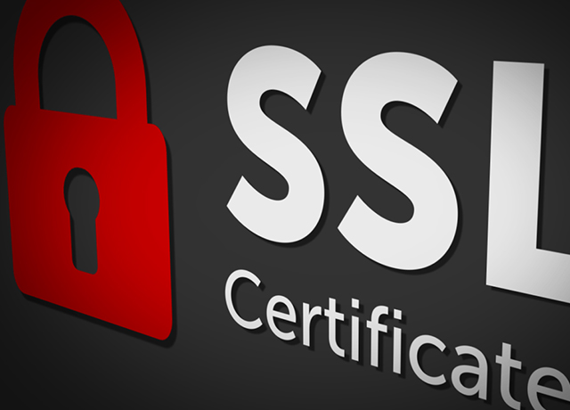 SSL | Digital Marketing Company in Kolkata